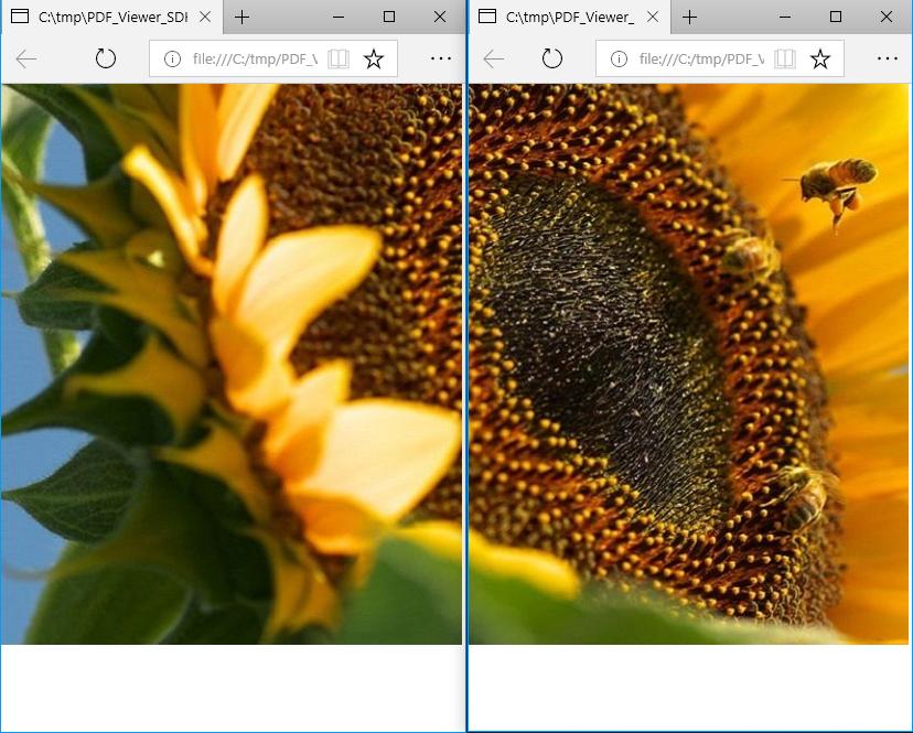 PDFViewerCtrl Edge